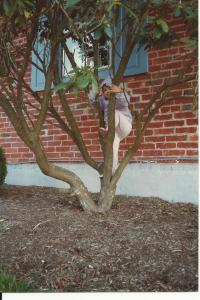Climbing a tree before my cancer diagnosis