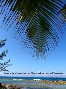There is freedom in beauty